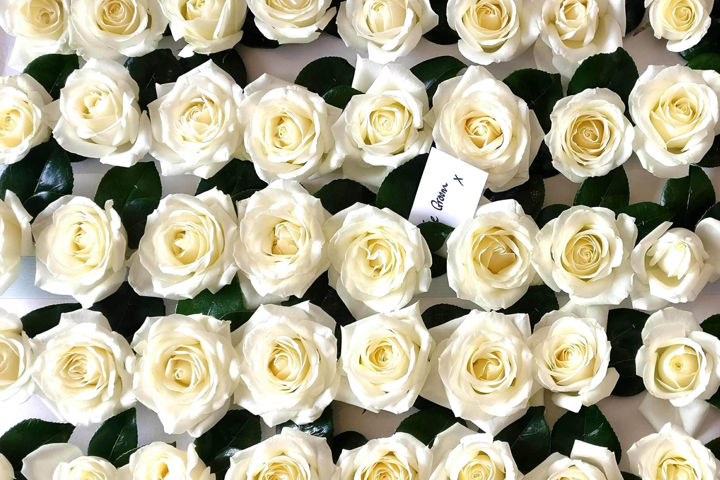 Services banner,white rose Buttonholes for an Indian wedding