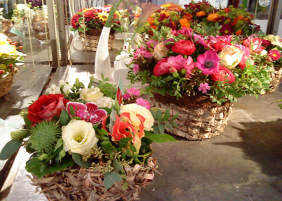 Contract arrangements, colourful, exotic flowers in baskets
