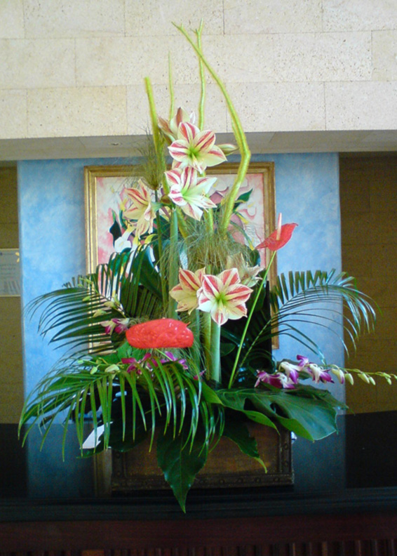 Tropical contract arrangement, amarylis, orchids, ferns and grasses